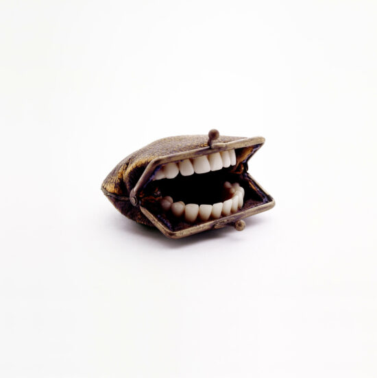 Purse With Teeth