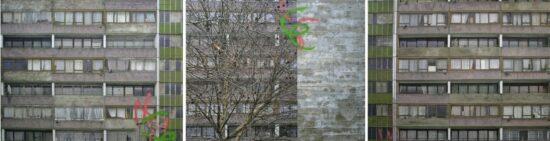 Tree (Triptych)