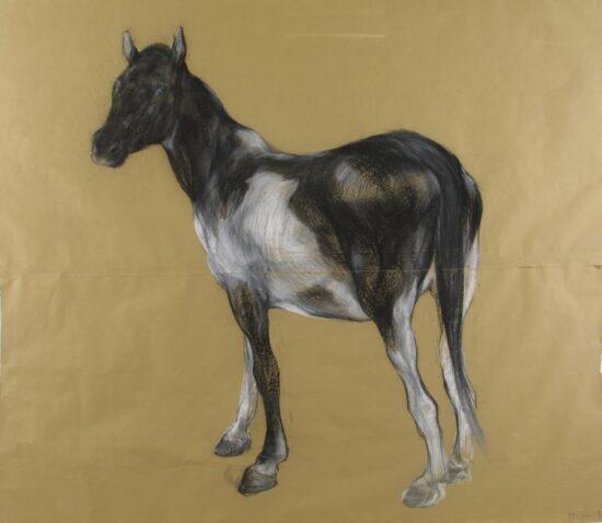 Painted Horse I