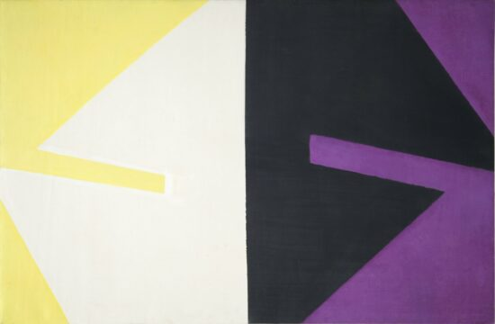 Violet Black White and Yellow