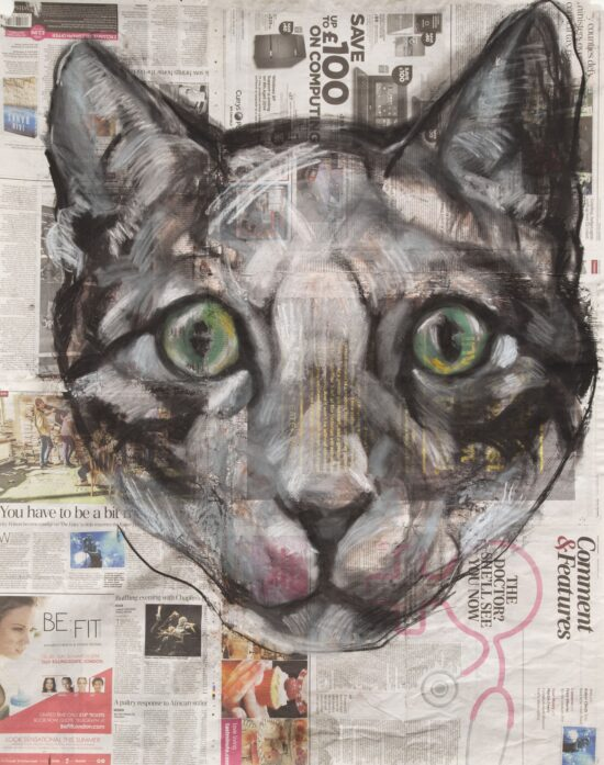 Untitled (Cat face)