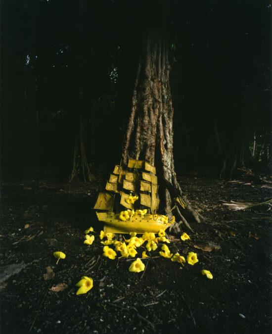 Vanuatu Altar