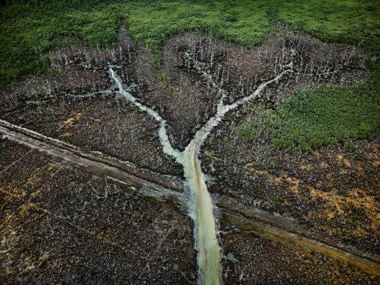 Oil Bunkering #2, Niger Delta