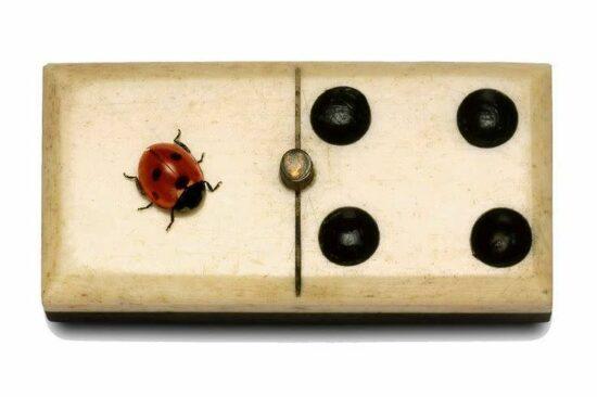 Ladybug Domino