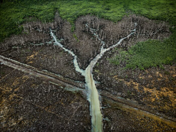 Edward Burtynsky featured in The Art Newspaper