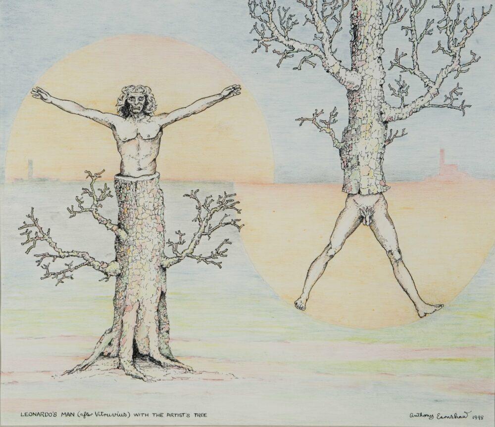 Leonardo's Man (After Vitruvius) with Artists Tree