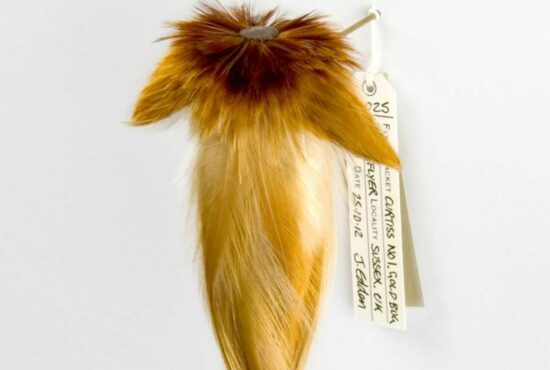 Tiny Feather Jackets, Luxibugstyle