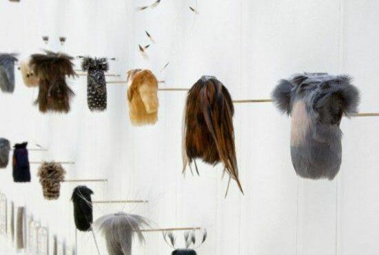 Jane Edden Ornithomorph Features on Aesthetica Magazine Blog