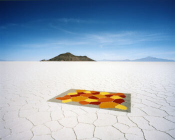 Scarlett Hooft Graafland 'Discovery' Private View